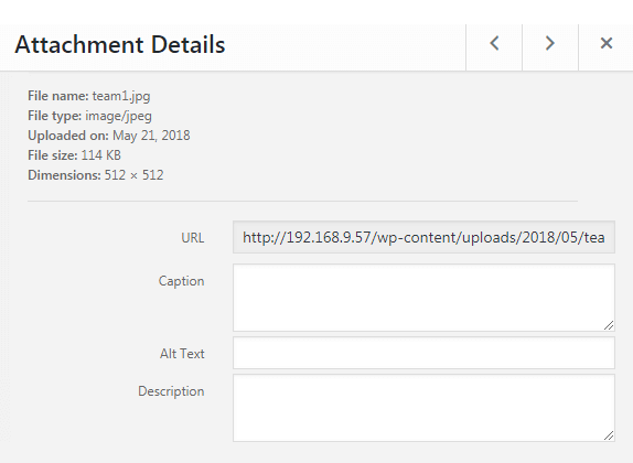Let download files from the website with JetElements