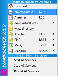Wampserver phpMyAdmin section