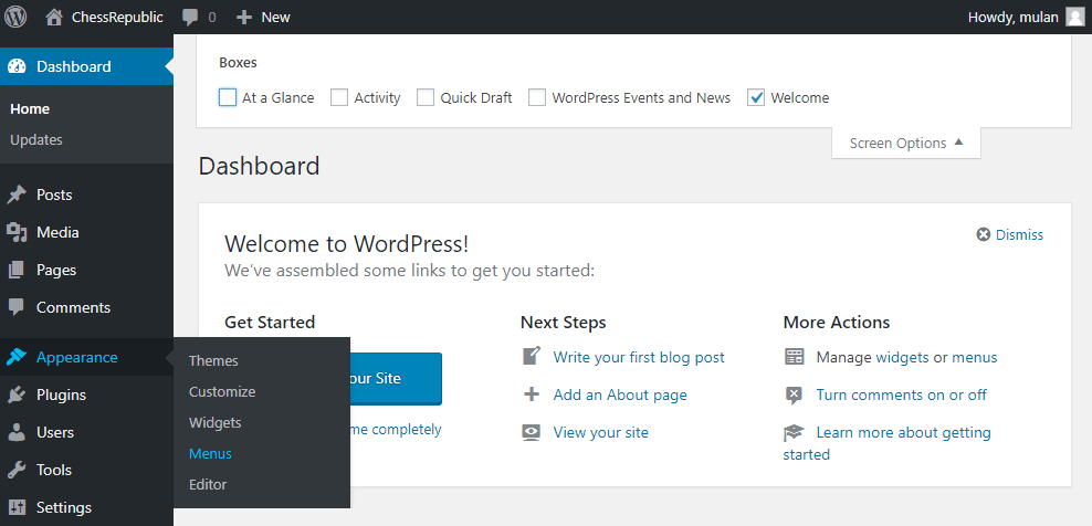 Menus option in WordPress Dashboard