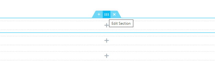 Edit Section button