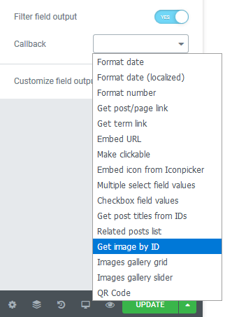 Callback option in Dynamic Field settings