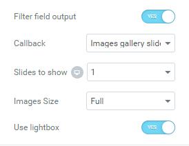 Images Gallery Slider callback