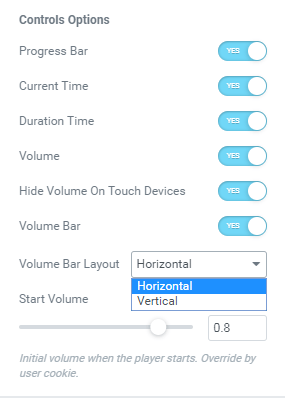 Audio Player widget controls options