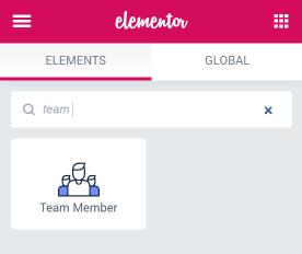 Team Member widget