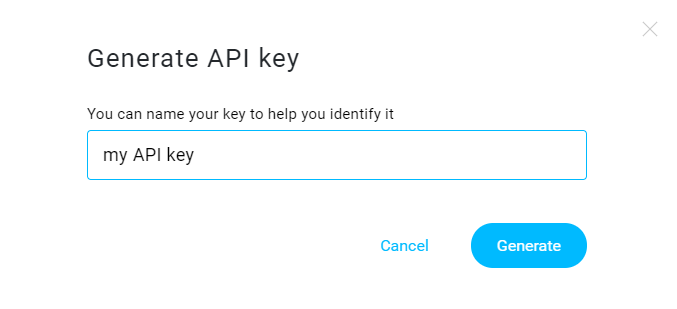 API key name