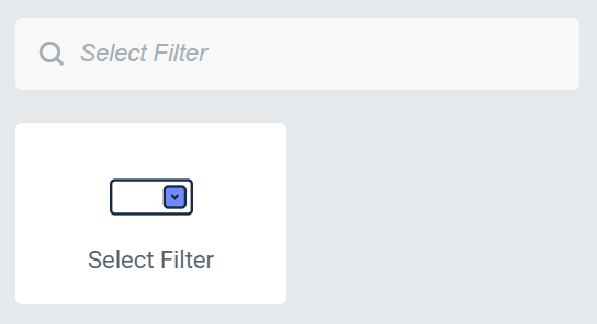 select filter widget