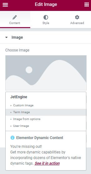 jetengine term image option picked