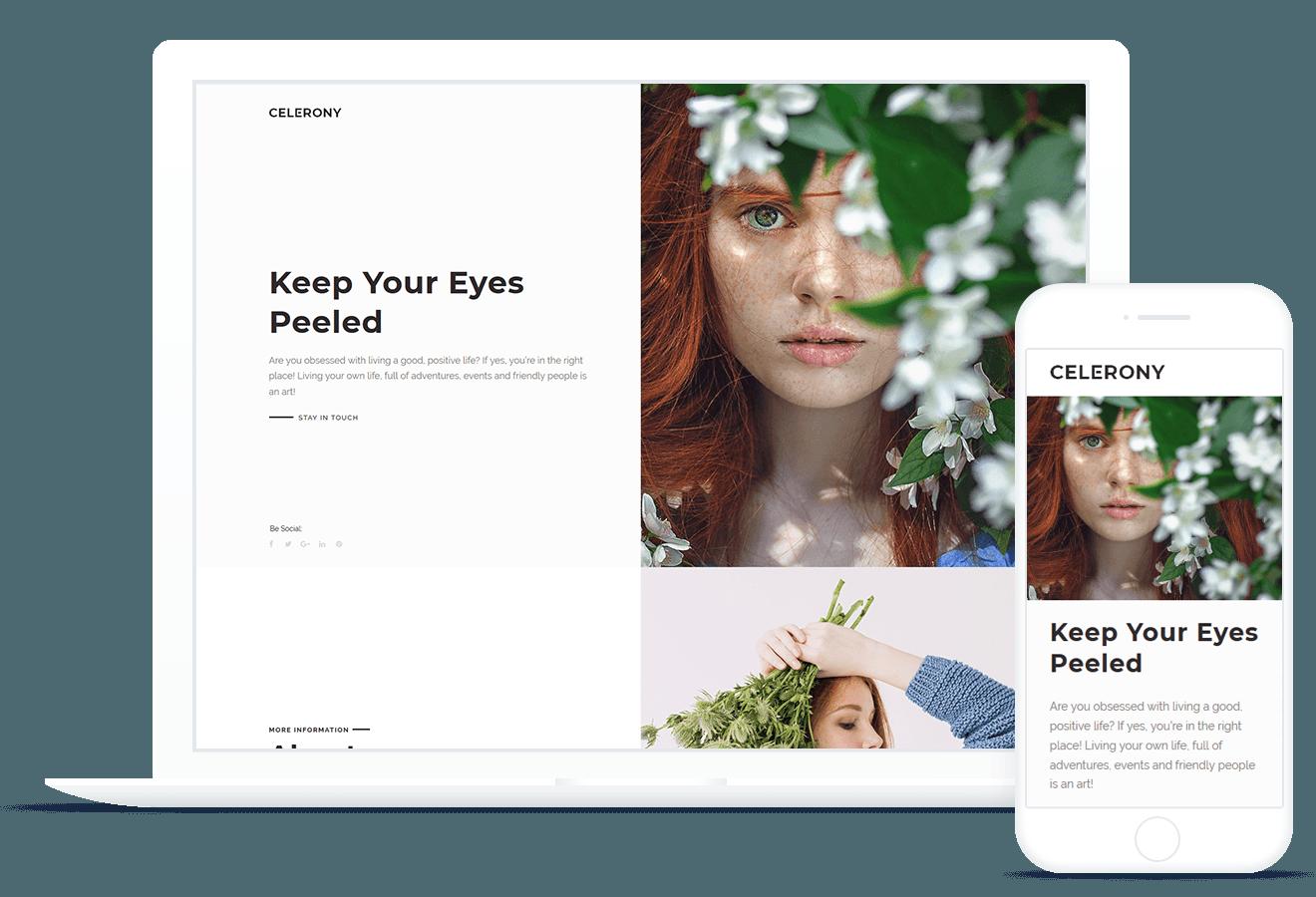 Celerony — WordPress Theme