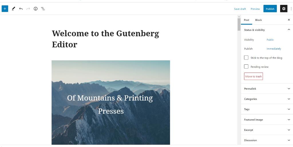 Gutenberg block editor interface