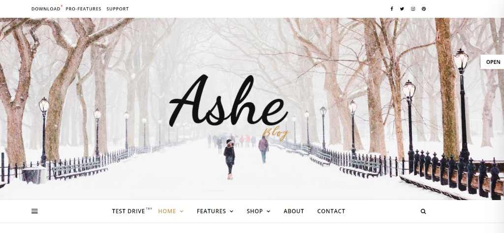 Ashe theme for WooCommerce
